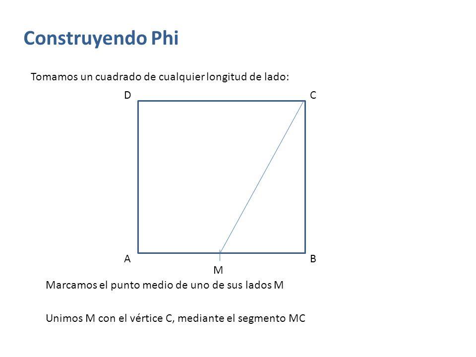Construyendo Phi Tomamos un cuadrado de cualquier longitud de lado: D