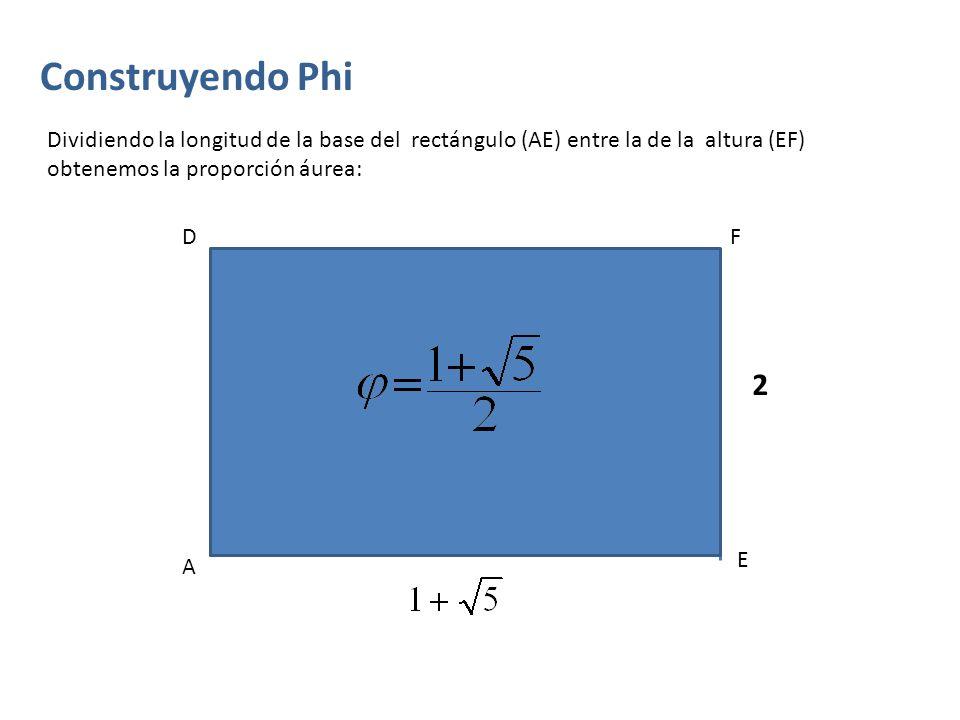 Construyendo Phi Dividiendo la longitud de la base del rectángulo (AE) entre la de la altura (EF) obtenemos la proporción áurea: