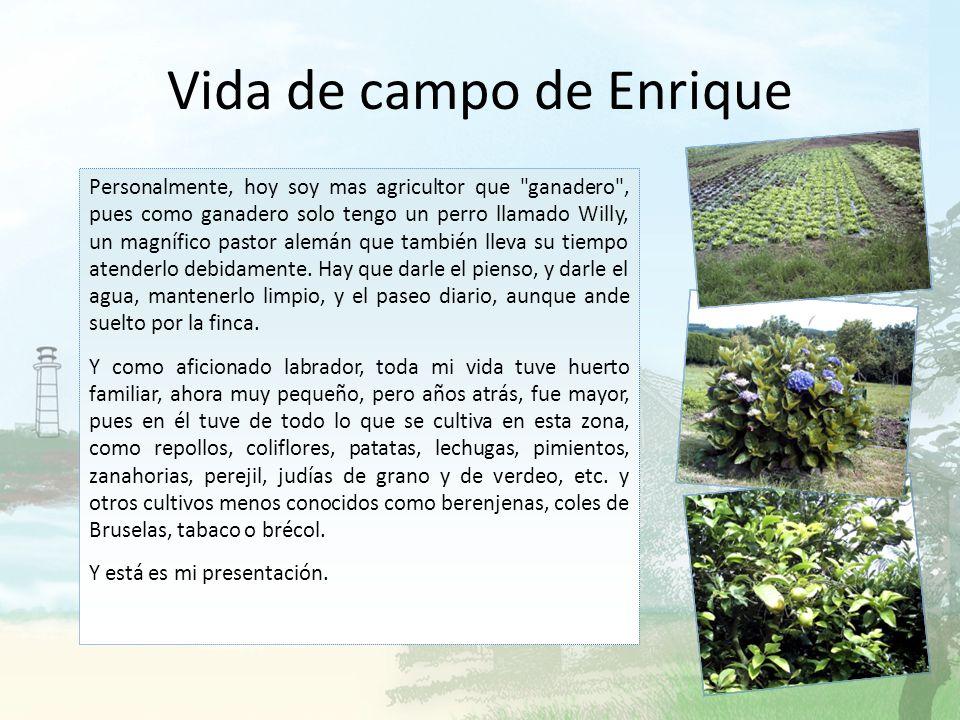 Vida de campo de Enrique