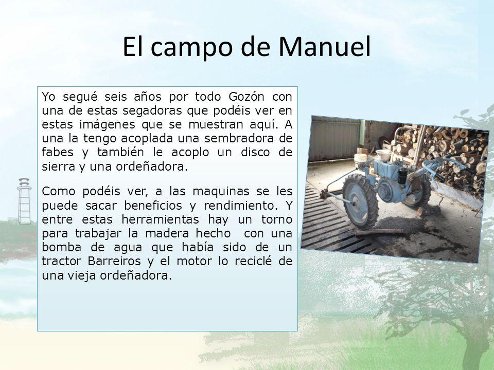 El campo de Manuel
