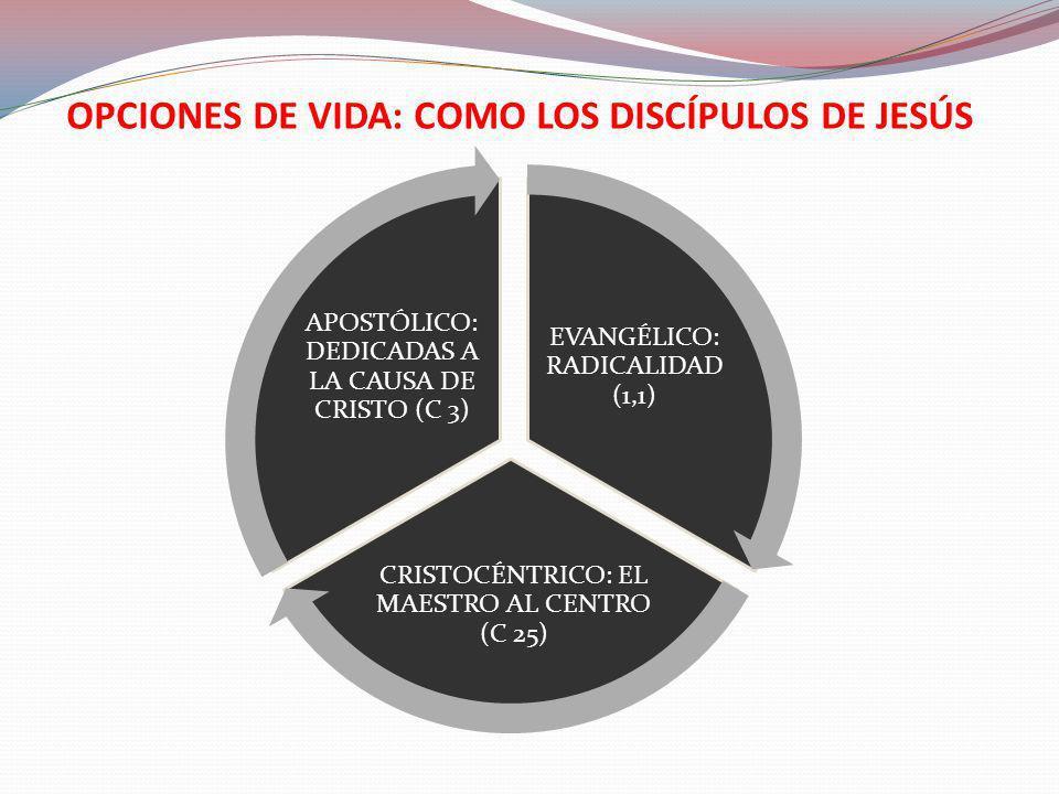 OPCIONES DE VIDA: COMO LOS DISCÍPULOS DE JESÚS