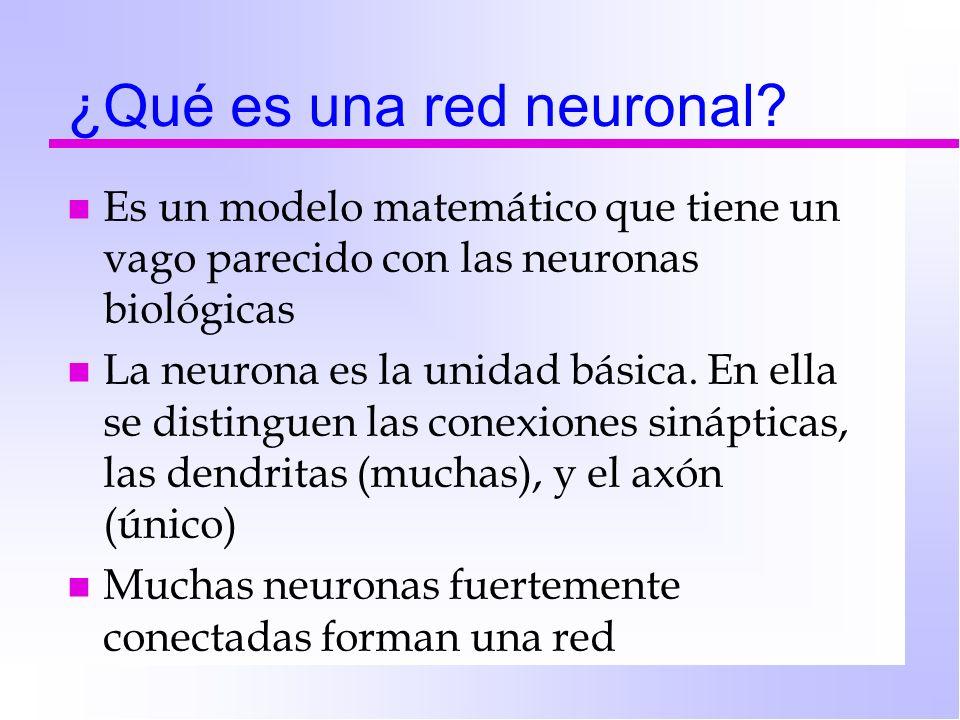 ¿Qué es una red neuronal