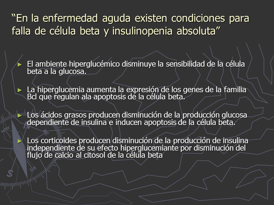 En la enfermedad aguda existen condiciones para falla de célula beta y insulinopenia absoluta