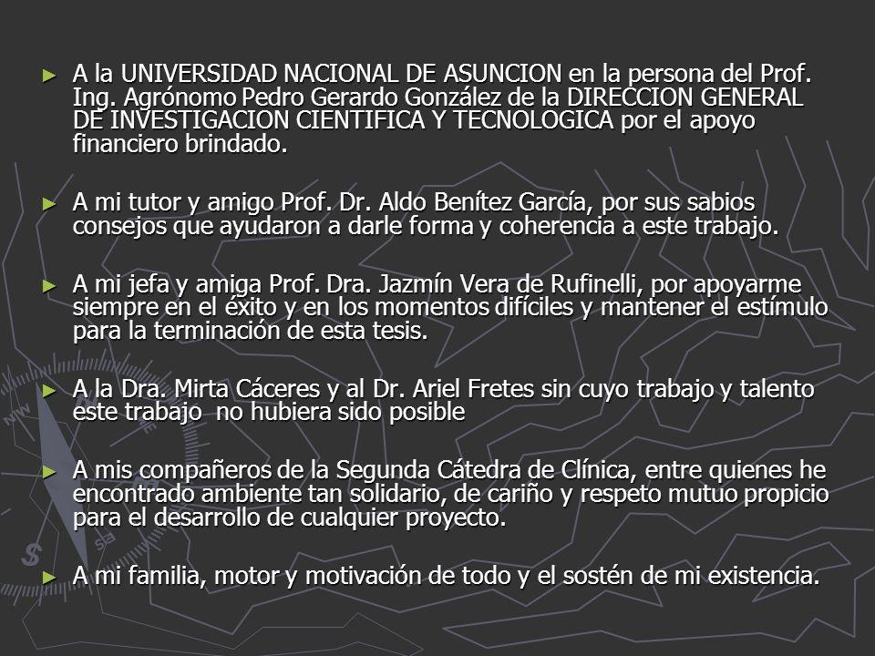A la UNIVERSIDAD NACIONAL DE ASUNCION en la persona del Prof. Ing