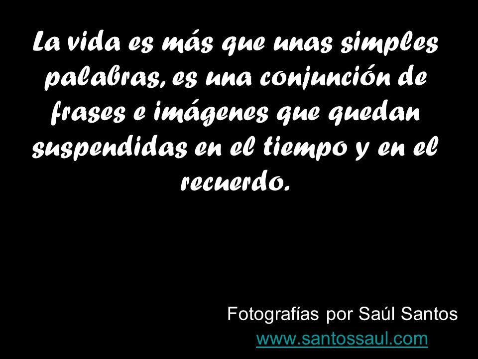 Fotografías por Saúl Santos www.santossaul.com