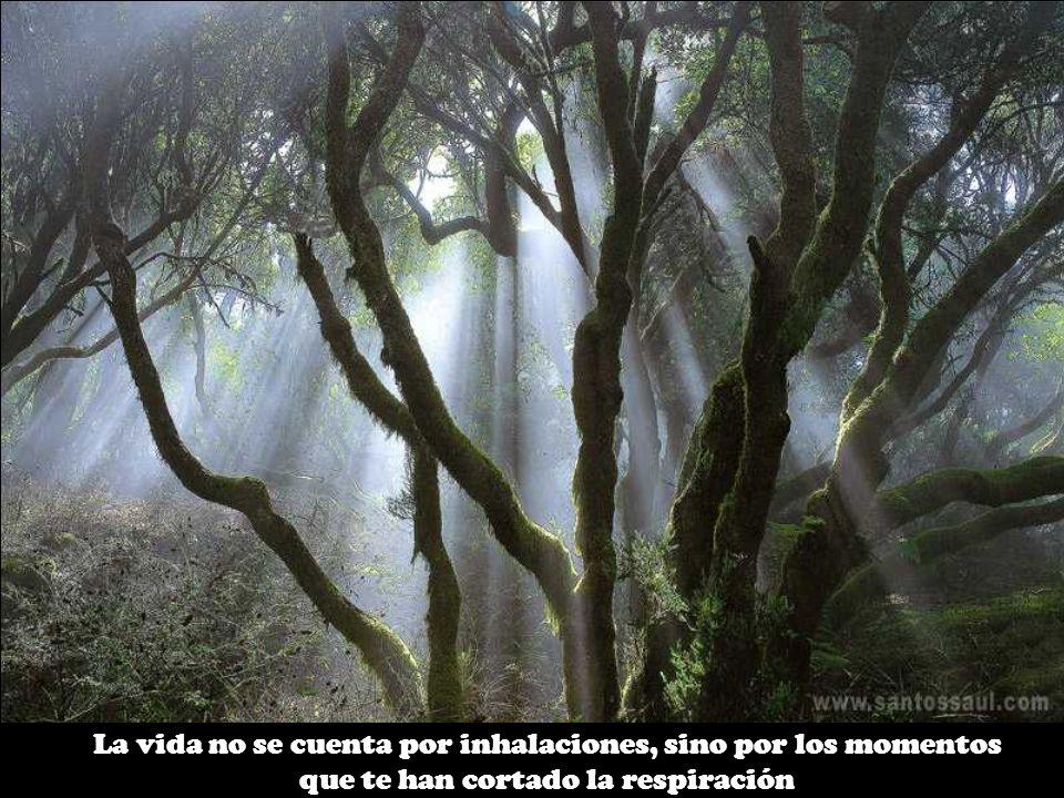 La vida no se cuenta por inhalaciones, sino por los momentos que te han cortado la respiración