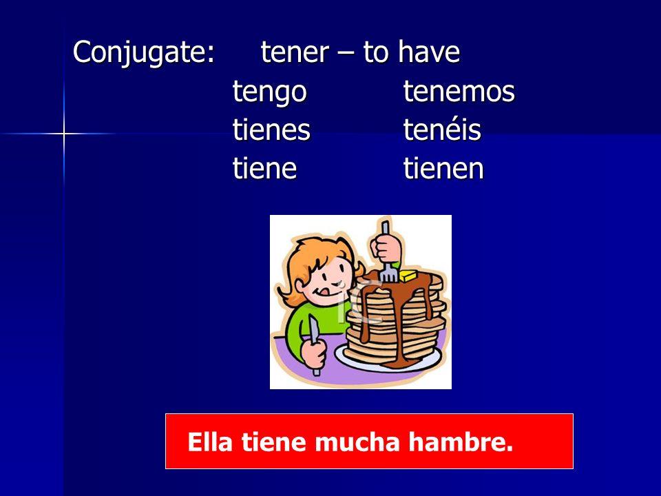 Conjugate: tener – to have tengo tenemos tienes tenéis tiene tienen