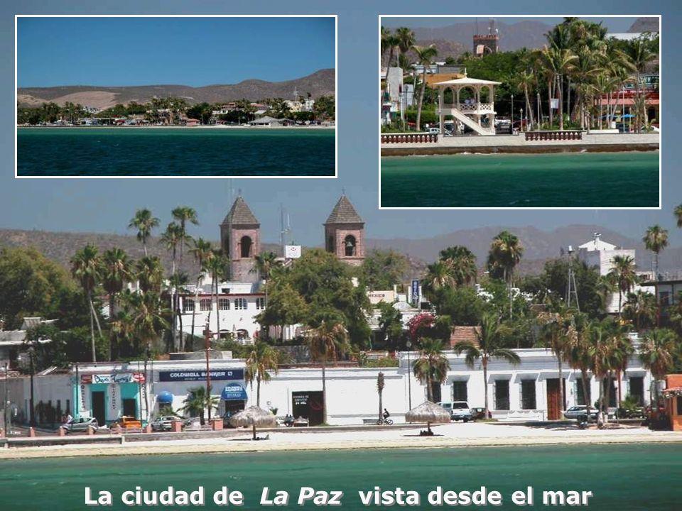 La ciudad de La Paz vista desde el mar