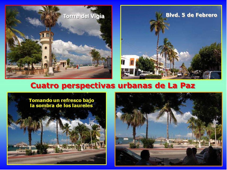 Cuatro perspectivas urbanas de La Paz