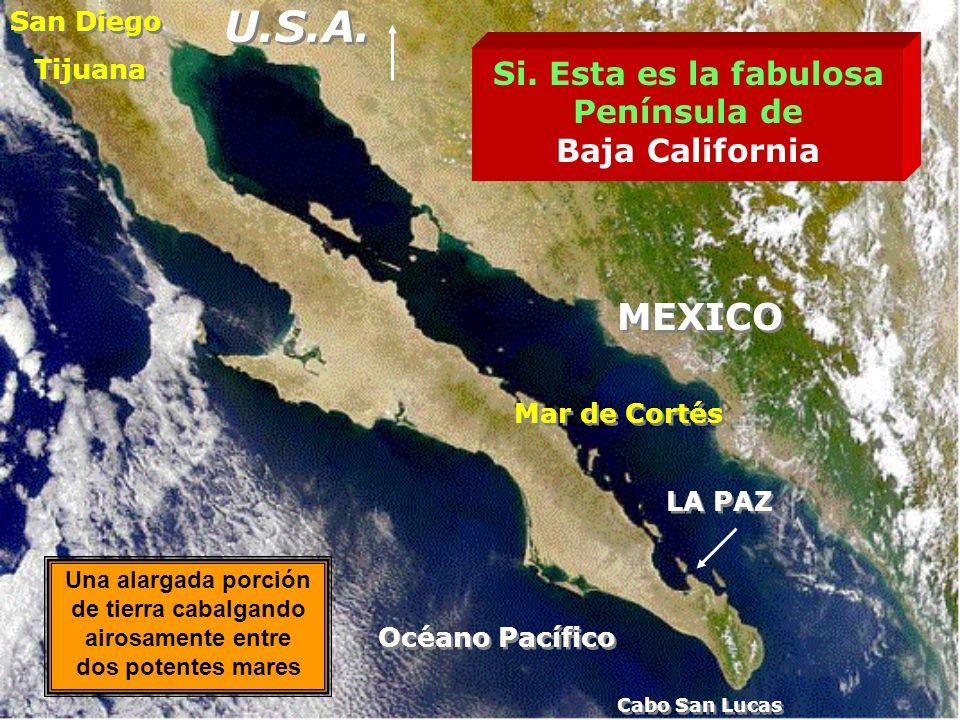 U.S.A. MEXICO Si. Esta es la fabulosa Península de Baja California