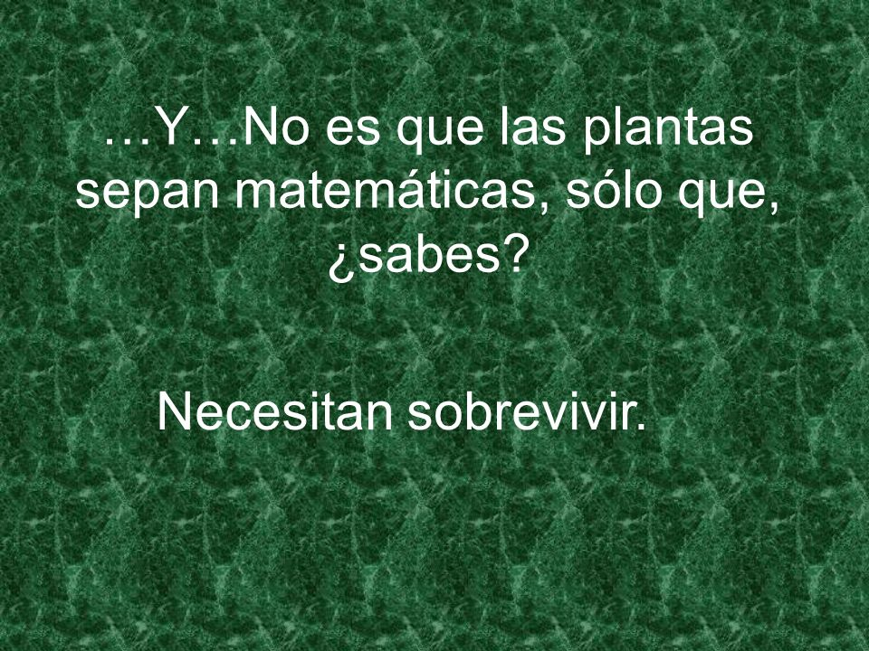 …Y…No es que las plantas sepan matemáticas, sólo que, ¿sabes