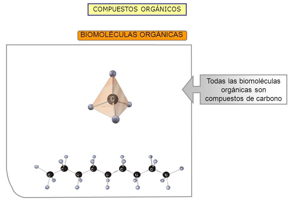 Todas las biomoléculas orgánicas son compuestos de carbono