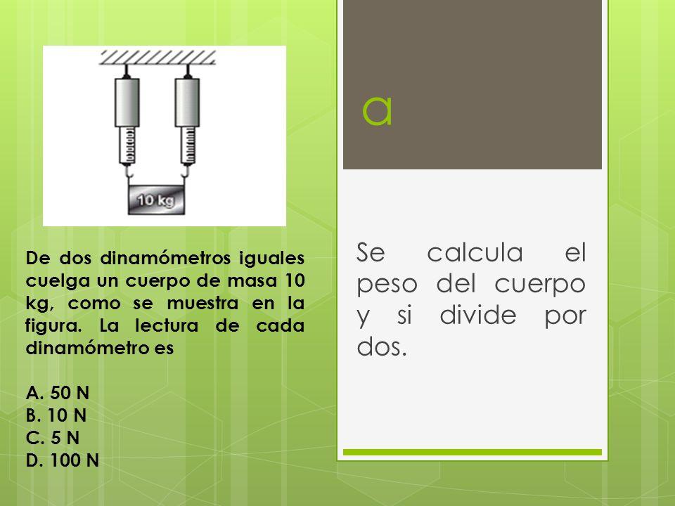 Se calcula el peso del cuerpo y si divide por dos.