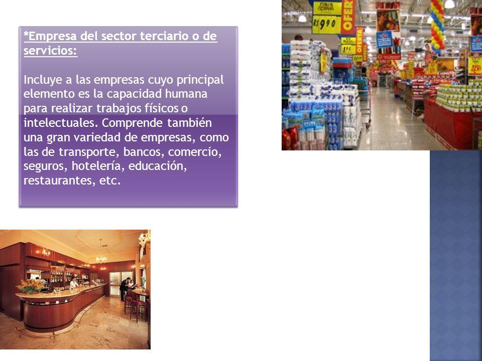 *Empresa del sector terciario o de servicios: