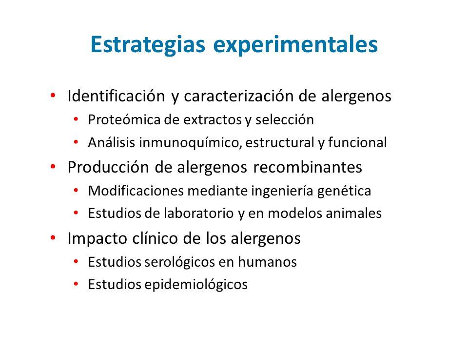Estrategias experimentales
