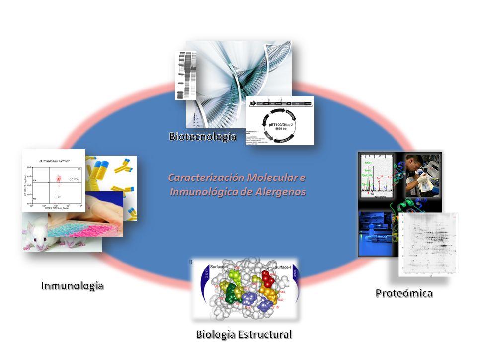Caracterización Molecular e Inmunológica de Alergenos