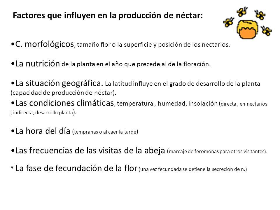 Factores que influyen en la producción de néctar: