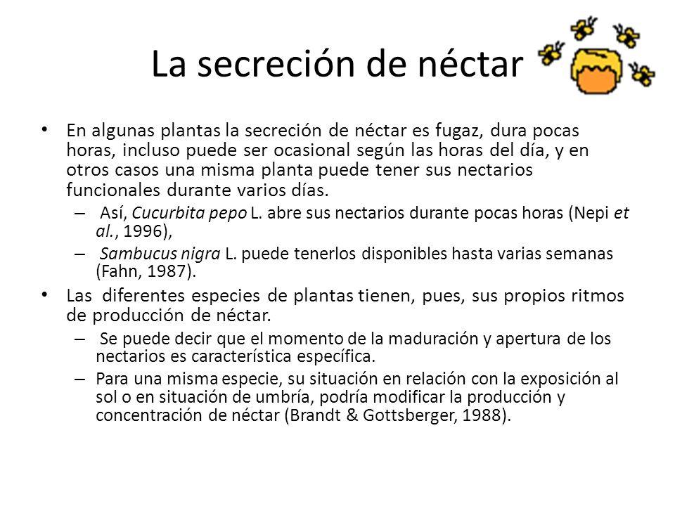 La secreción de néctar