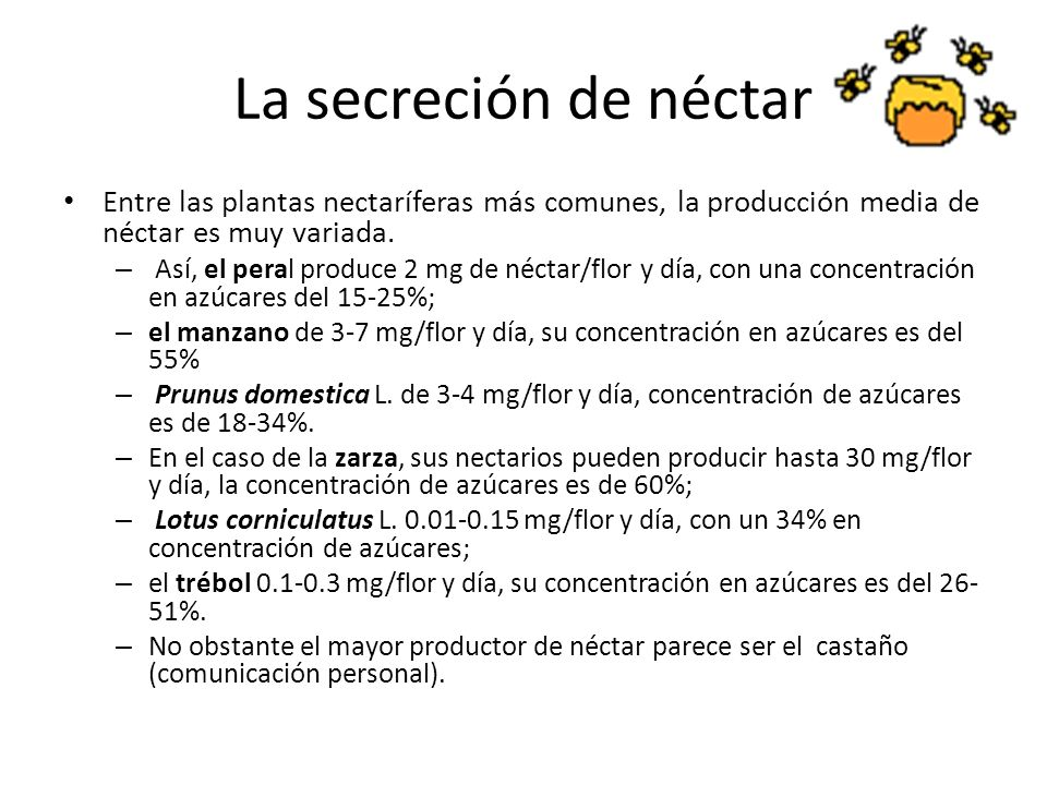 La secreción de néctar Entre las plantas nectaríferas más comunes, la producción media de néctar es muy variada.