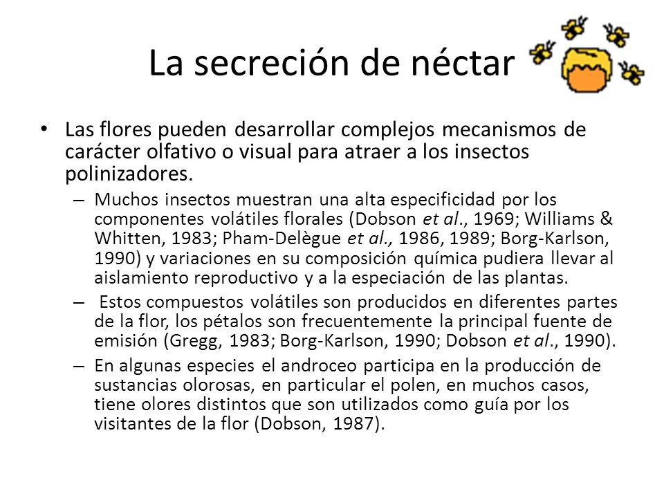 La secreción de néctarLas flores pueden desarrollar complejos mecanismos de carácter olfativo o visual para atraer a los insectos polinizadores.
