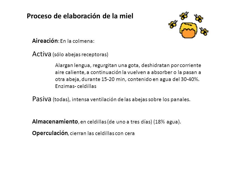 Proceso de elaboración de la miel