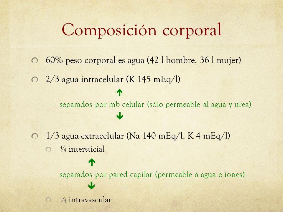 Composición corporal 60% peso corporal es agua (42 l hombre, 36 l mujer) 2/3 agua intracelular (K 145 mEq/l)