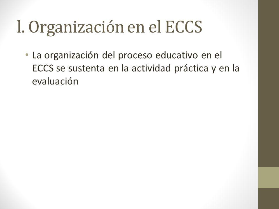 l. Organización en el ECCS