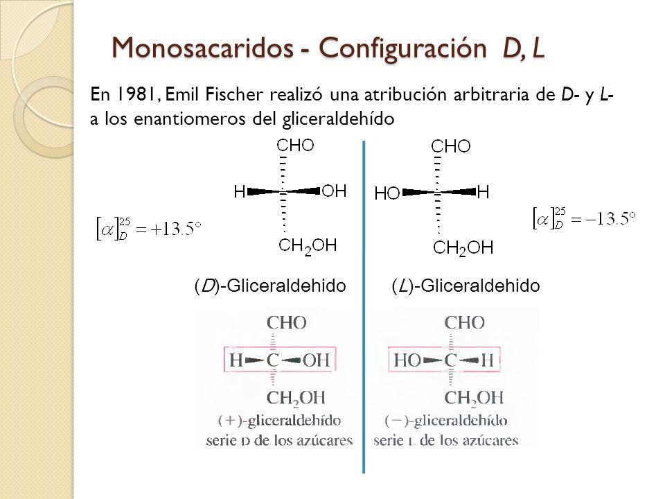 Monosacaridos - Configuración D, L