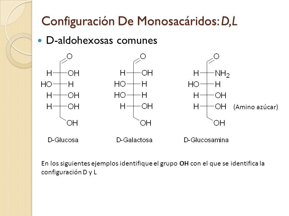 Configuración De Monosacáridos: D,L
