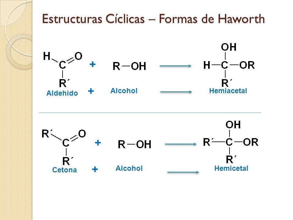 Estructuras Cíclicas – Formas de Haworth