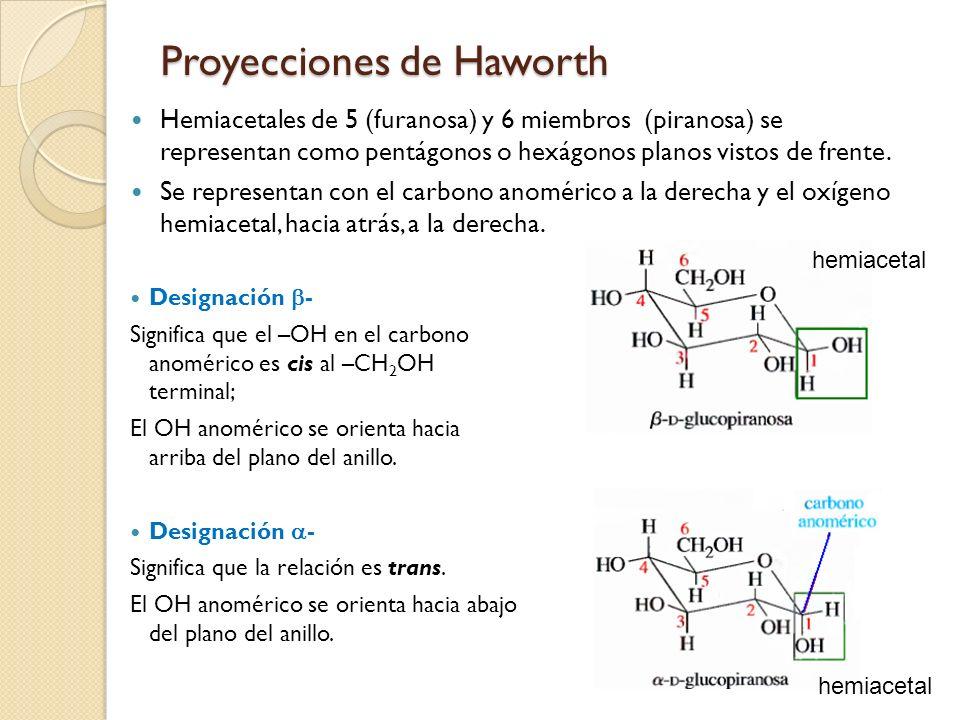 Proyecciones de Haworth