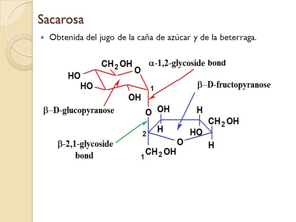Sacarosa Obtenida del jugo de la caña de azúcar y de la beterraga. 60