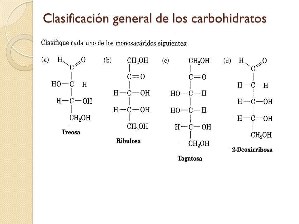 Clasificación general de los carbohidratos