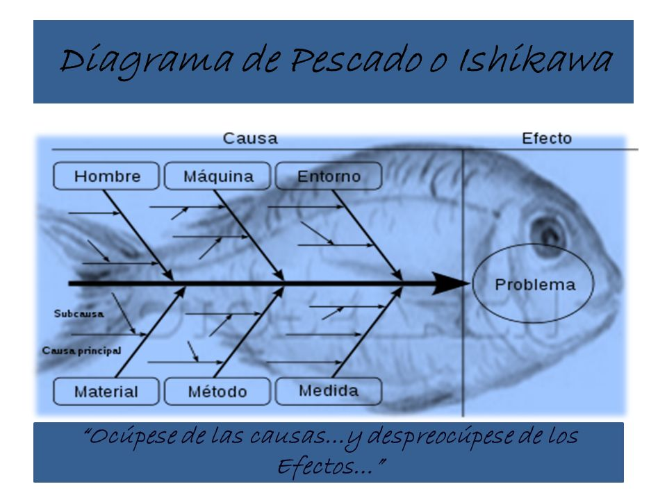 Diagrama de Pescado o Ishikawa