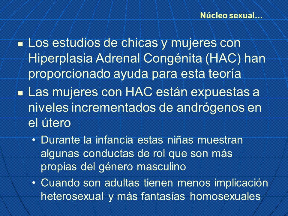 Núcleo sexual… Los estudios de chicas y mujeres con Hiperplasia Adrenal Congénita (HAC) han proporcionado ayuda para esta teoría.
