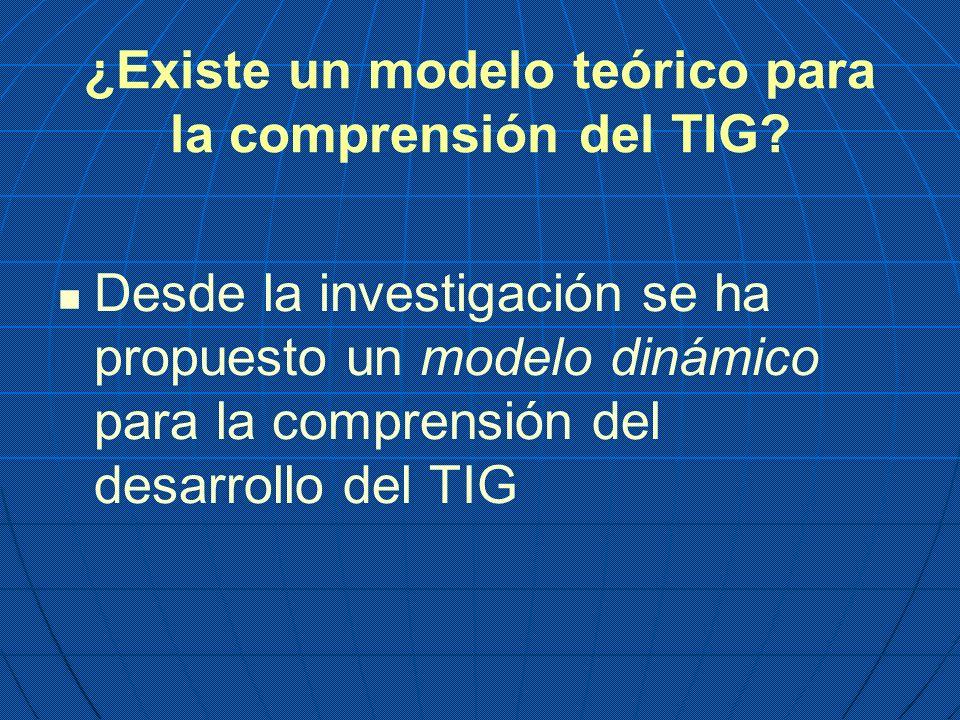 ¿Existe un modelo teórico para la comprensión del TIG