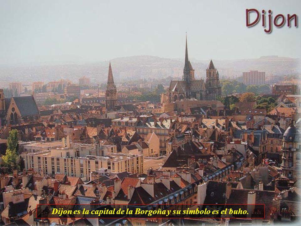 Dijon es la capital de la Borgoña y su símbolo es el buho.