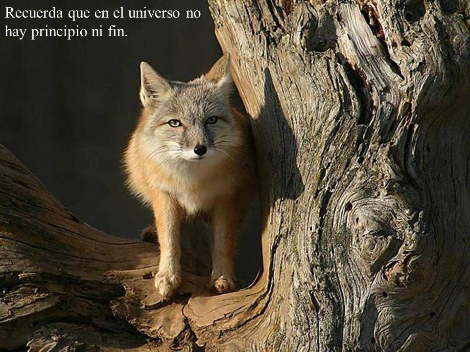 Recuerda que en el universo no hay principio ni fin.