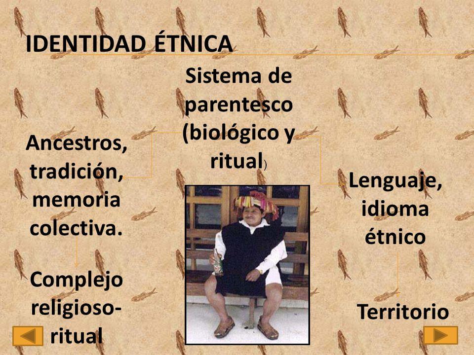 IDENTIDAD ÉTNICA Sistema de parentesco (biológico y ritual) Ancestros,