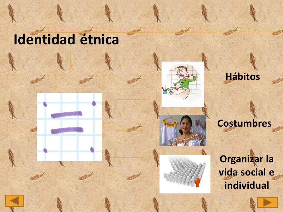 Organizar la vida social e individual