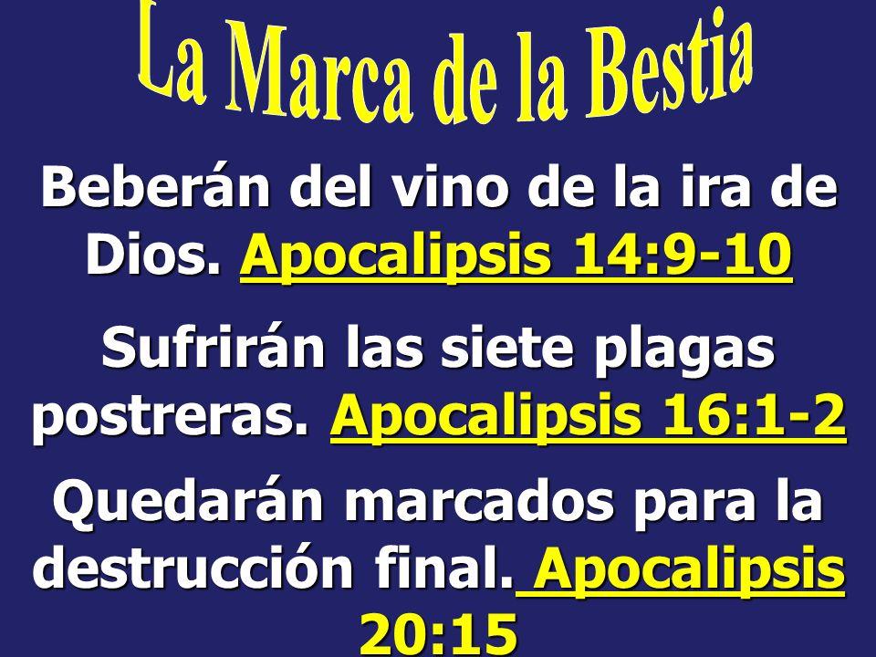 Beberán del vino de la ira de Dios. Apocalipsis 14:9-10