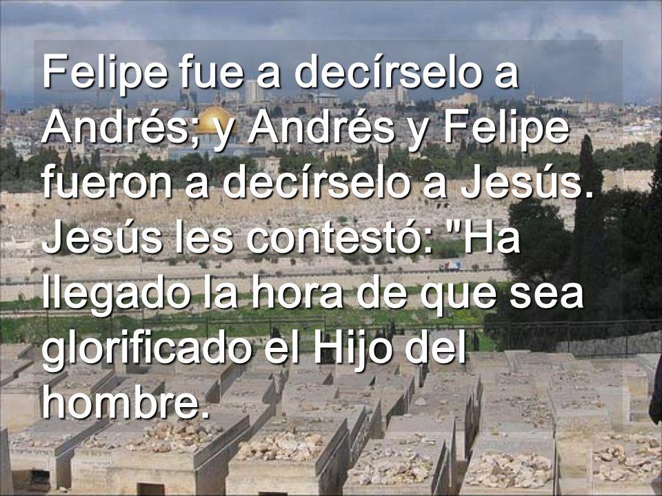 Felipe fue a decírselo a Andrés; y Andrés y Felipe fueron a decírselo a Jesús.