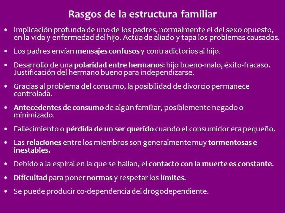 Rasgos de la estructura familiar