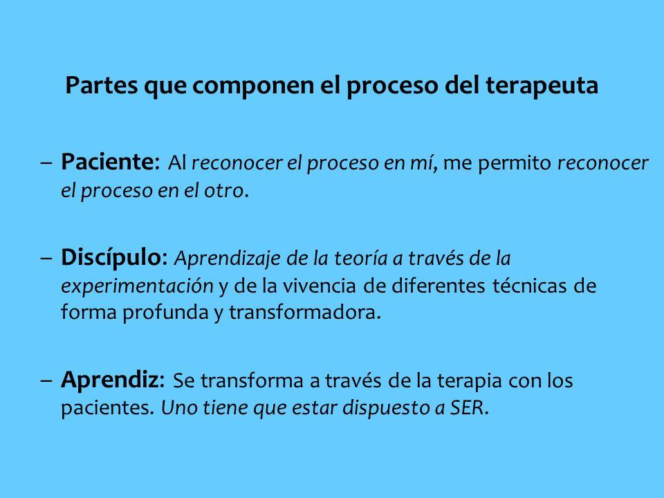 Partes que componen el proceso del terapeuta