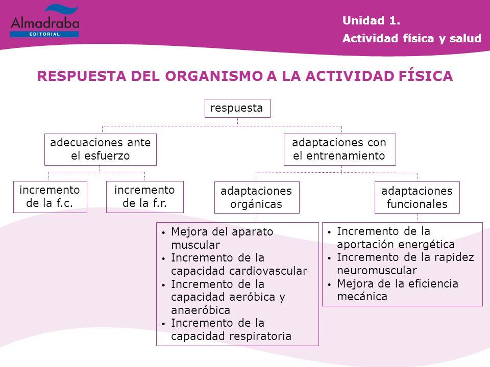 RESPUESTA DEL ORGANISMO A LA ACTIVIDAD FÍSICA