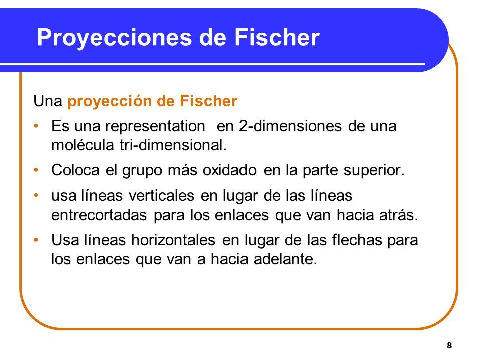 Proyecciones de Fischer