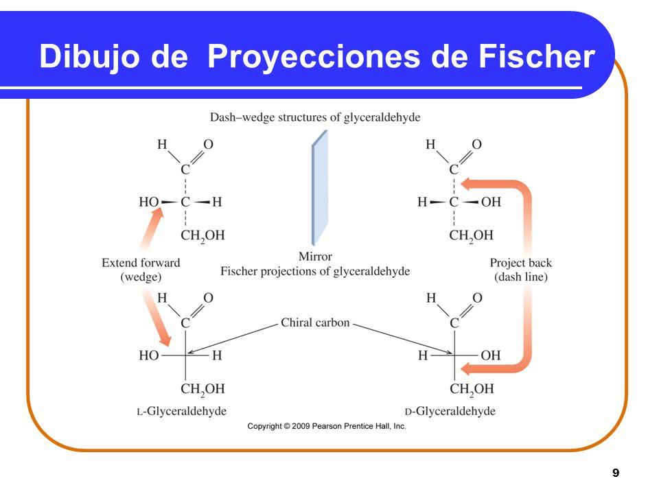 Dibujo de Proyecciones de Fischer