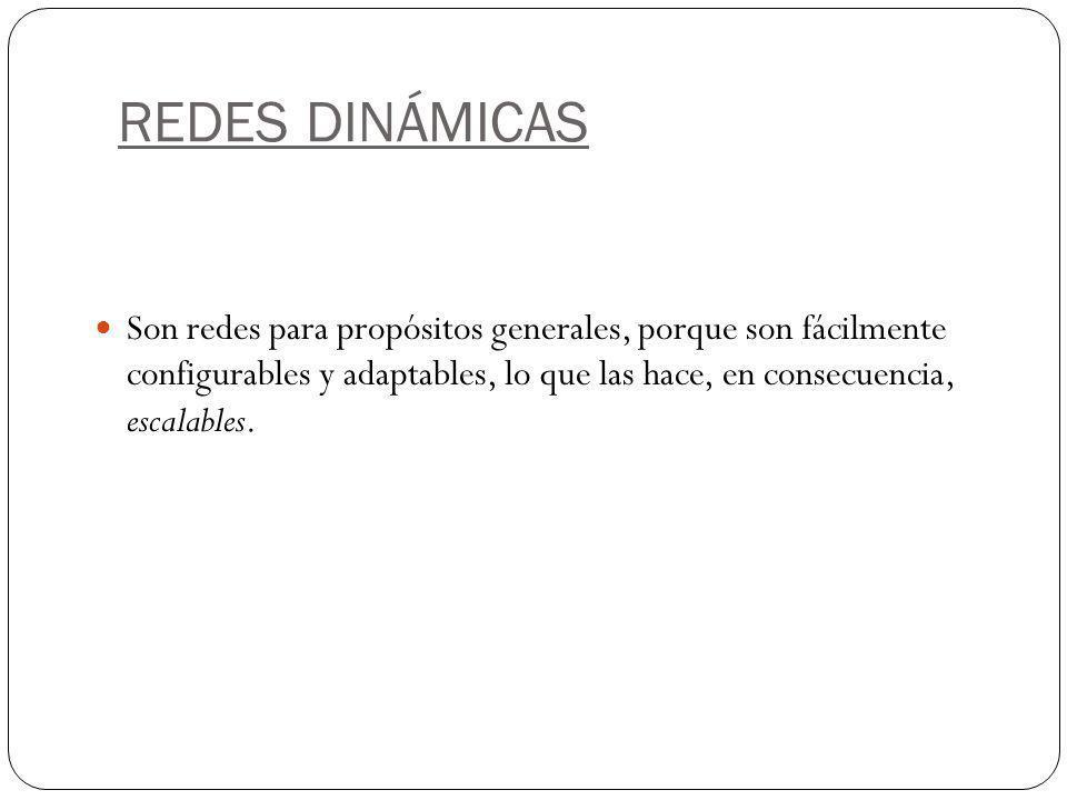REDES DINÁMICAS
