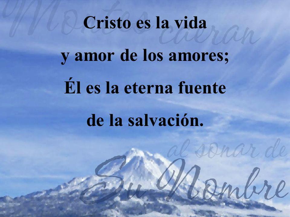 Cristo es la vida y amor de los amores; Él es la eterna fuente de la salvación.
