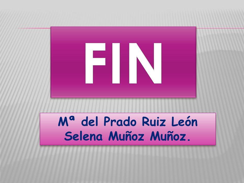 FIN Mª del Prado Ruiz León Selena Muñoz Muñoz.
